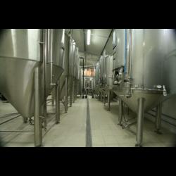 Birra Tripel Lt. 0,33 - La Birra Artigianale