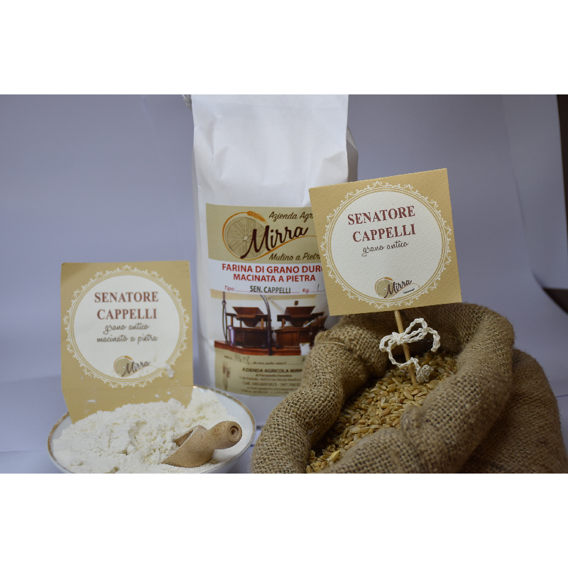 Durum wheat flour senator cappelli kg 5 - Az. Agr. Mirra