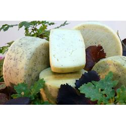 Cow's cheese Tartufo kg 1,1 approximately - Sanniolat