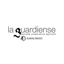 Cantari Sannio DOP Aglianico riserva - La Guardiense