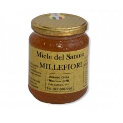 Wildflower honey Gr. 500