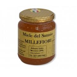Miele Millefiori kg 1