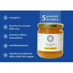 Wildflower honey kg. 1
